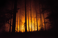 Oregon forest fire 36 pit fire Estacada trees glow orange
