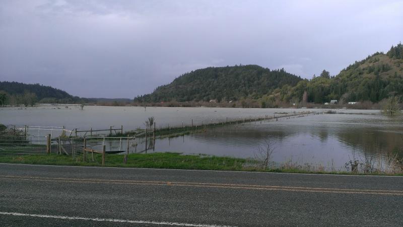 Ce n'est pas une flood ...
