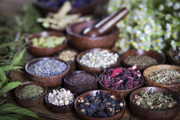 bowls of herbs for herbal formulas