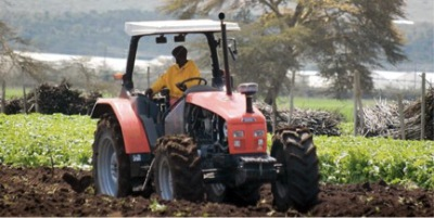 economic impact of Pongamia