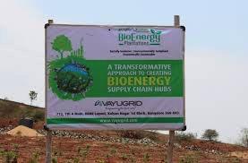 Bioenergy Zone