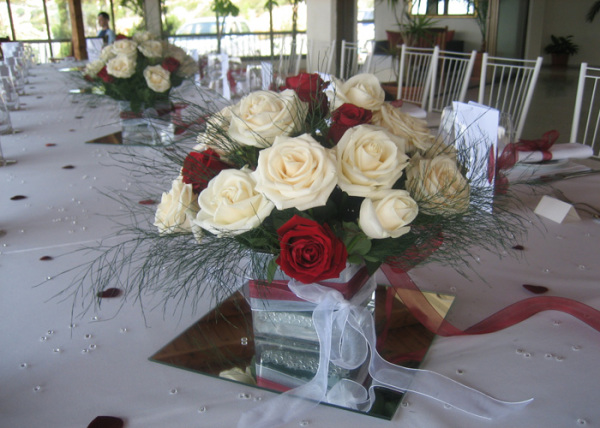 simple red and white roses look lovely