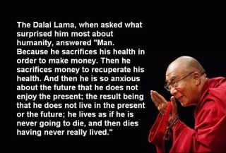 A quote from the Dalai Lama,picked up from google