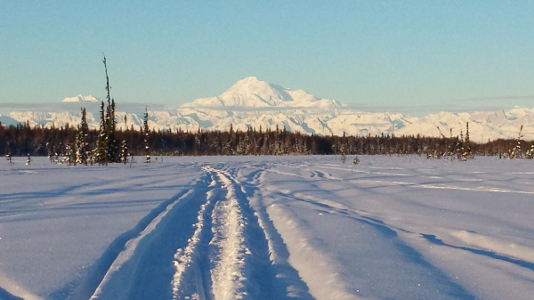 denali from the trail that runs behind the inn