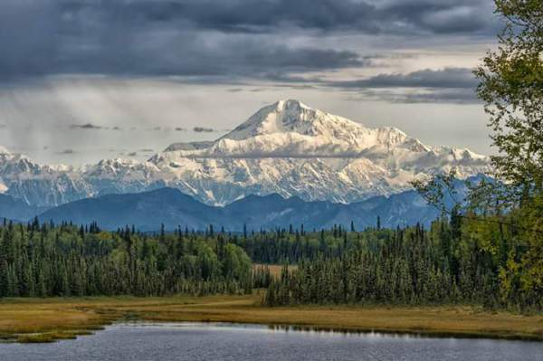 Denali from Mile 3 on Petersville Rd. Photo by Philip Kuntz
