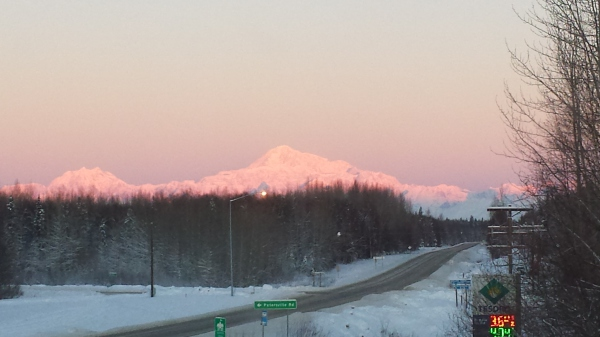 pink sunset over denali taken from our porch