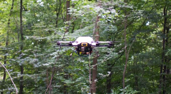 Bluebird - an almost stock AscTec Firefly