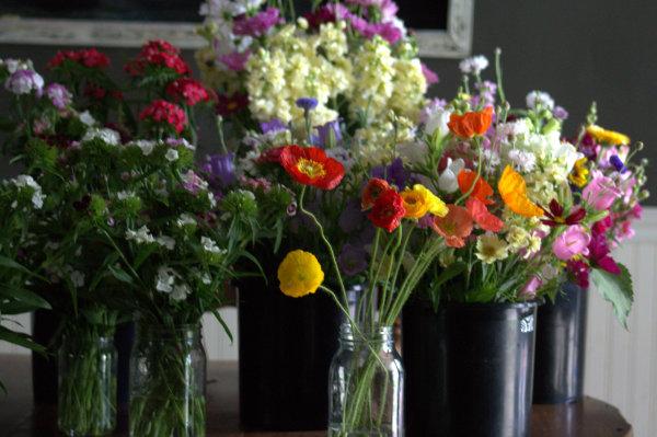 Buckets o' Flowers