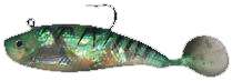 Oz shad 8cm Green Stripe