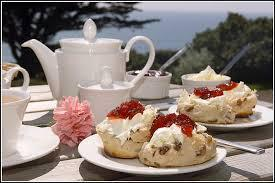Homemade scones, clotted cream & jam - perfect combination