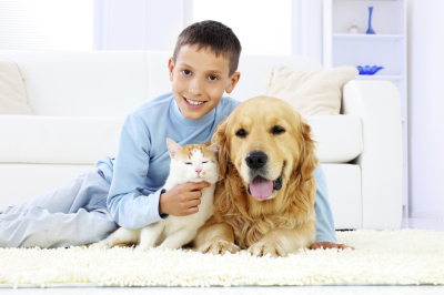 Pet Deodorizer and Disinfectant