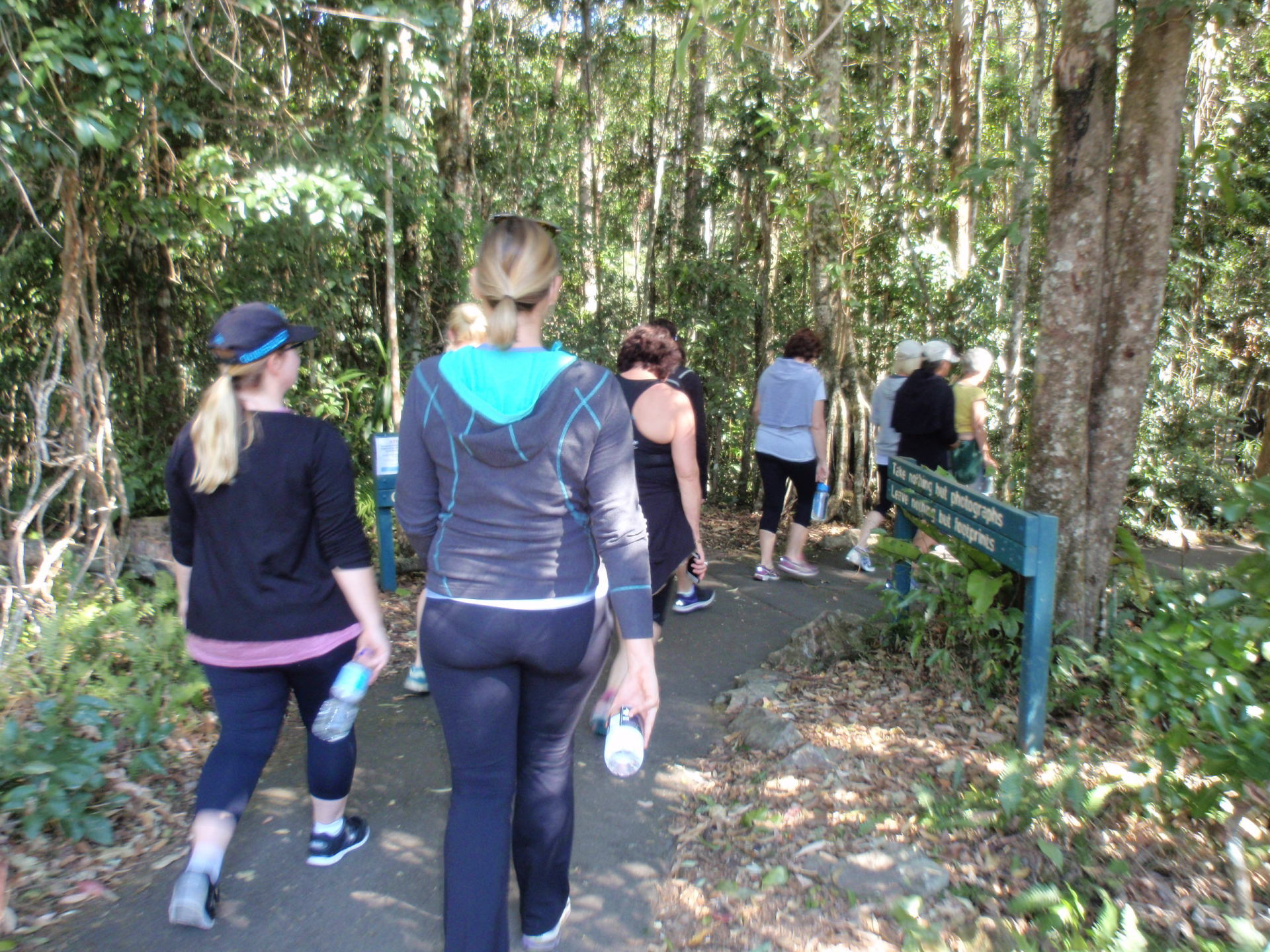 Waterfall walk at the Wellness Retreat