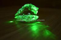 glowing crystal oyste
