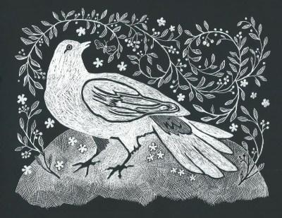 Cautious Bird