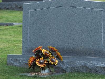 MSC to address stepchildren & wrongful-death settlements