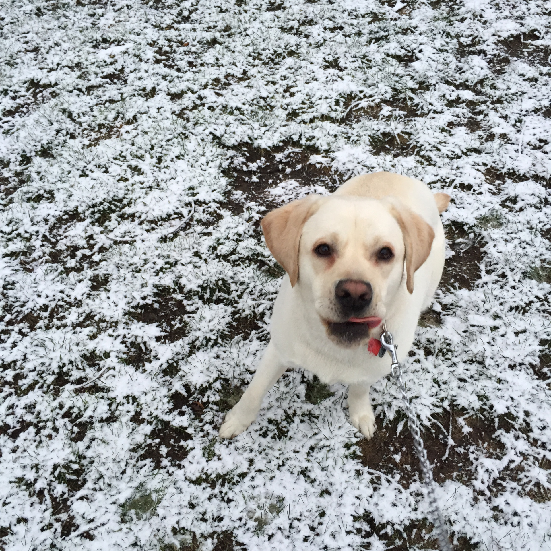 Snow day play time <3