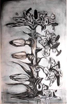 brenda barnum charcoal drawings