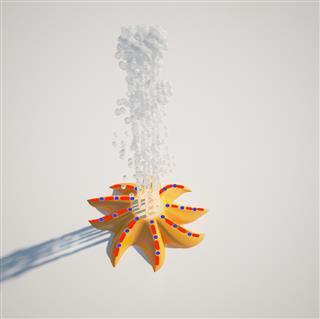 S-02.13 Starfish
