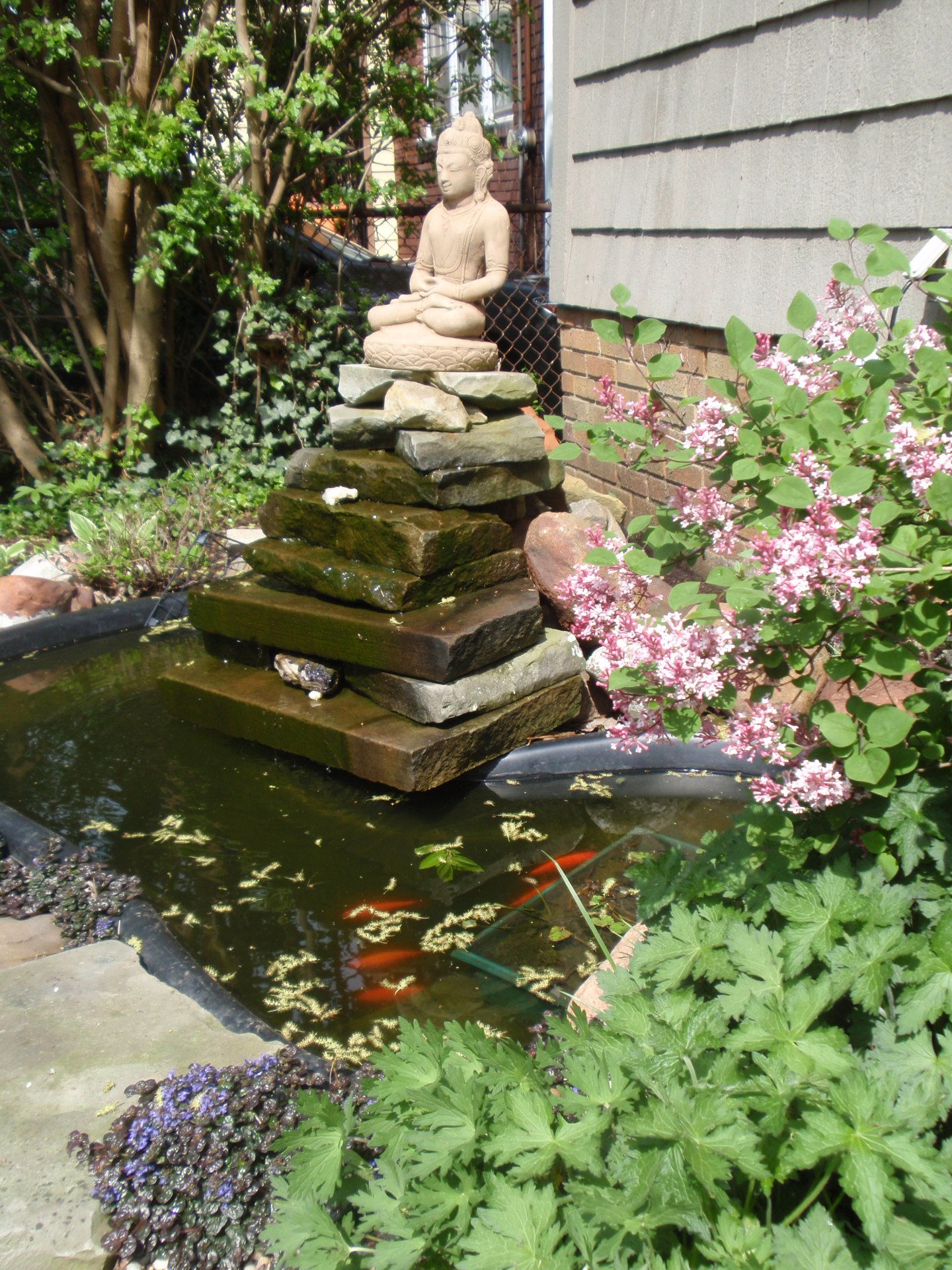 meditation fountain residential facility