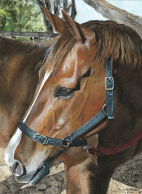 Acrylic painting of chestnut horse at rest