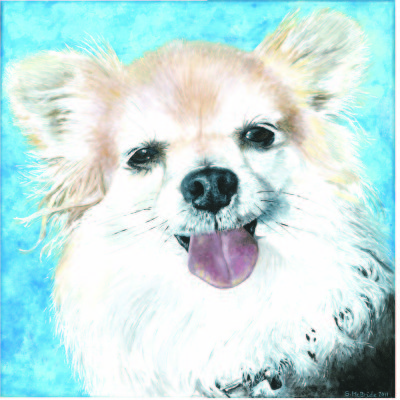 Yogi ~ Pet Portrait Commission ~ Acrylic on canvas
