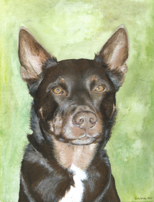 Wally ~ Pet Portrait Commission ~ Acrylic on canvas