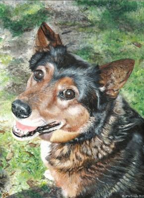Zoe ~ Pet Portrait Commission ~ Acrylic on canvas