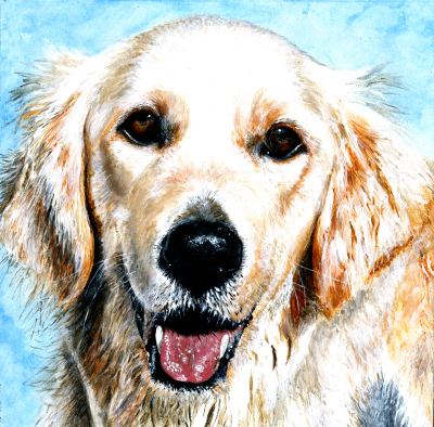 Willow ~ Pet Portrait Commission ~ Acrylic on canvas