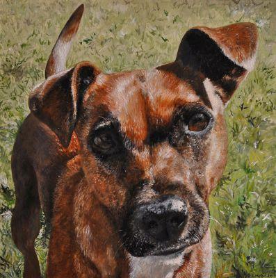 Jemma ~ Pet Portrait Commission ~ Acrylic on canvas