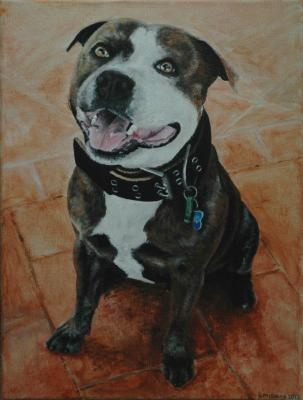 Angus ~ Pet Portrait Commission ~ Acrylic on canvas