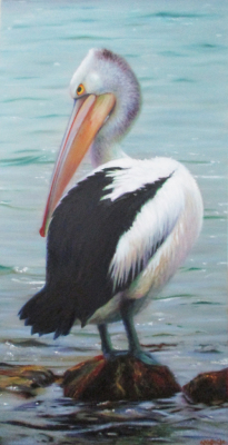 "Pelican - 18 x 36"" Oil on Canvas"
