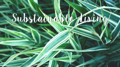 5 ways to live a sustainable lifestyle