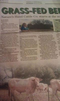Panama City News Herald Article
