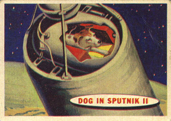 Illustration of Laika, the first dog launched into space by the Russians in 1957.                                            Credit: unknown