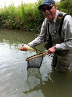 A river fisherman catching and releasing a brown trout