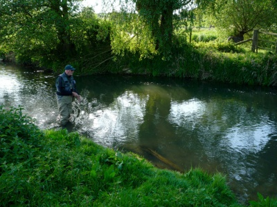 River Windrush Trout Fishing