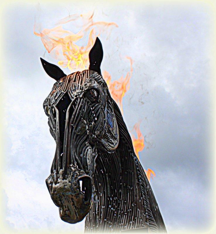 flaming horse