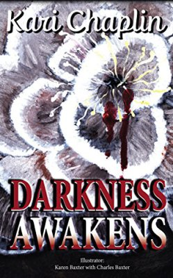 Darkness Awakens Book