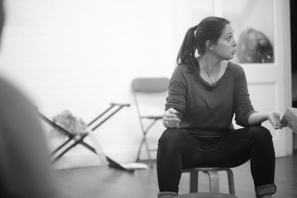 Waiting on Shakespeare (Erica Chestnut)