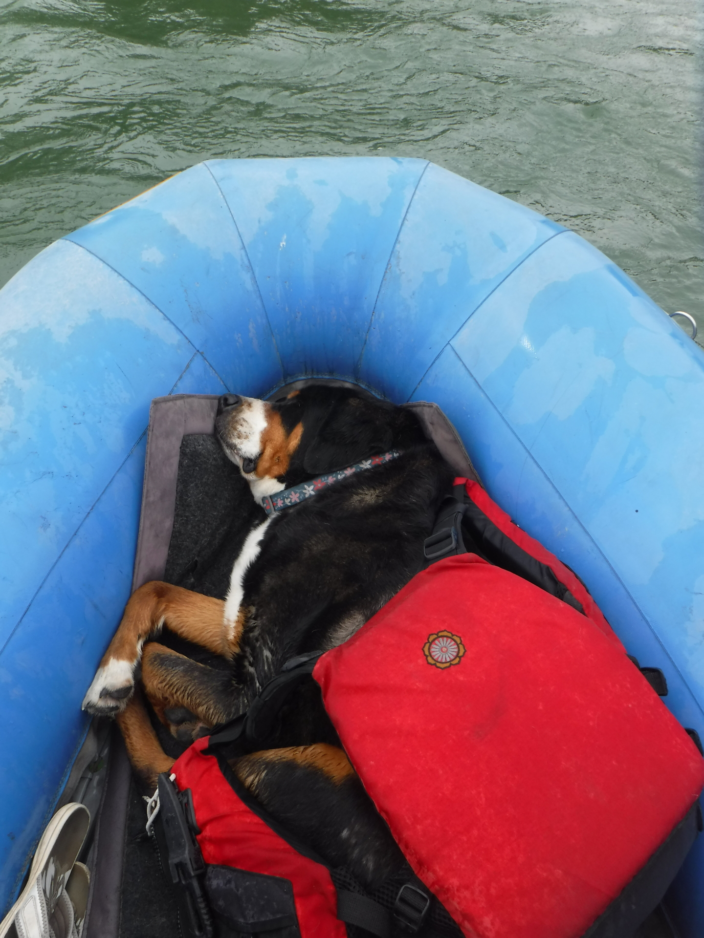 Tuckered out rafting!