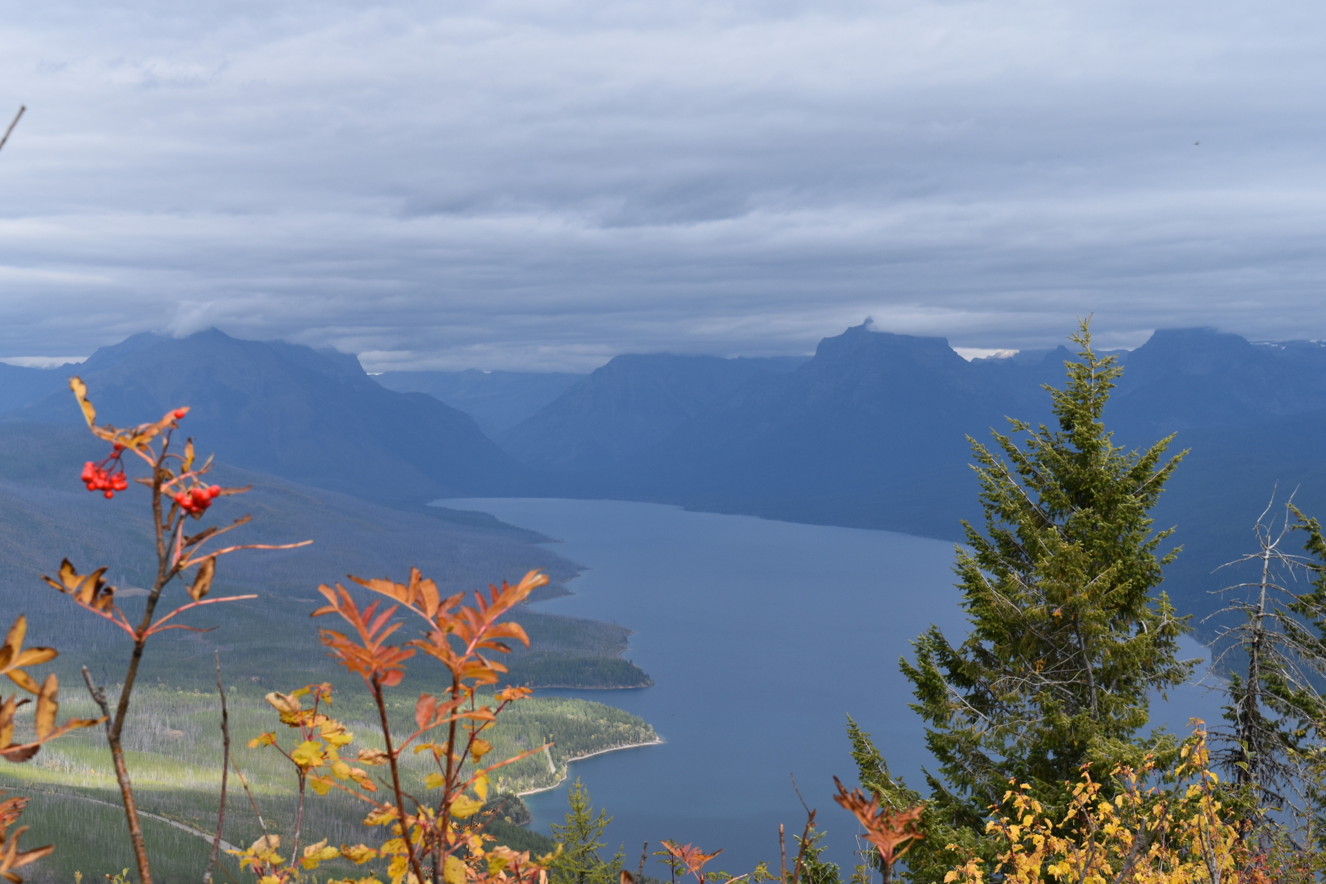 Looking out from Apgar Lookout to Lake McDonald