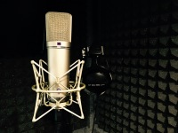 Northern voiceover