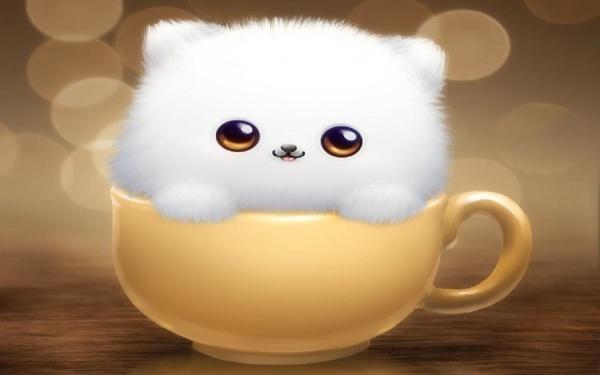 Ain't It Cute?