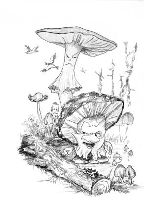 Adventure in the Mushroom Forest