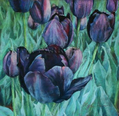 black tulips, flowers, impressionism, pastel art