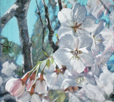 pastel painting cherry blossom