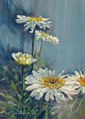 daisies, flowers, pastel art, impressionism