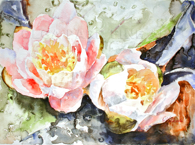 watercolor, flowers, rain drops, water lilies, pond, pink, impressionism