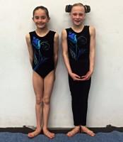 Mansfield Team Gymnastics