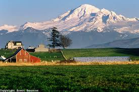 Whatcom, Skagit, Islands
